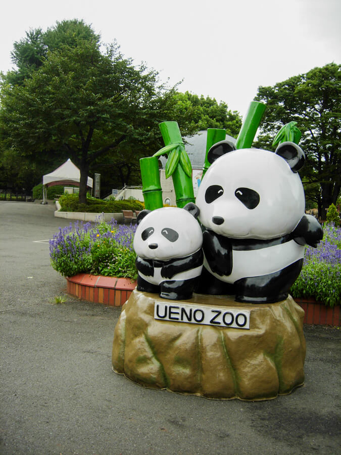 Ueno Dierentuin Tokyo Japan | The Travel Tester