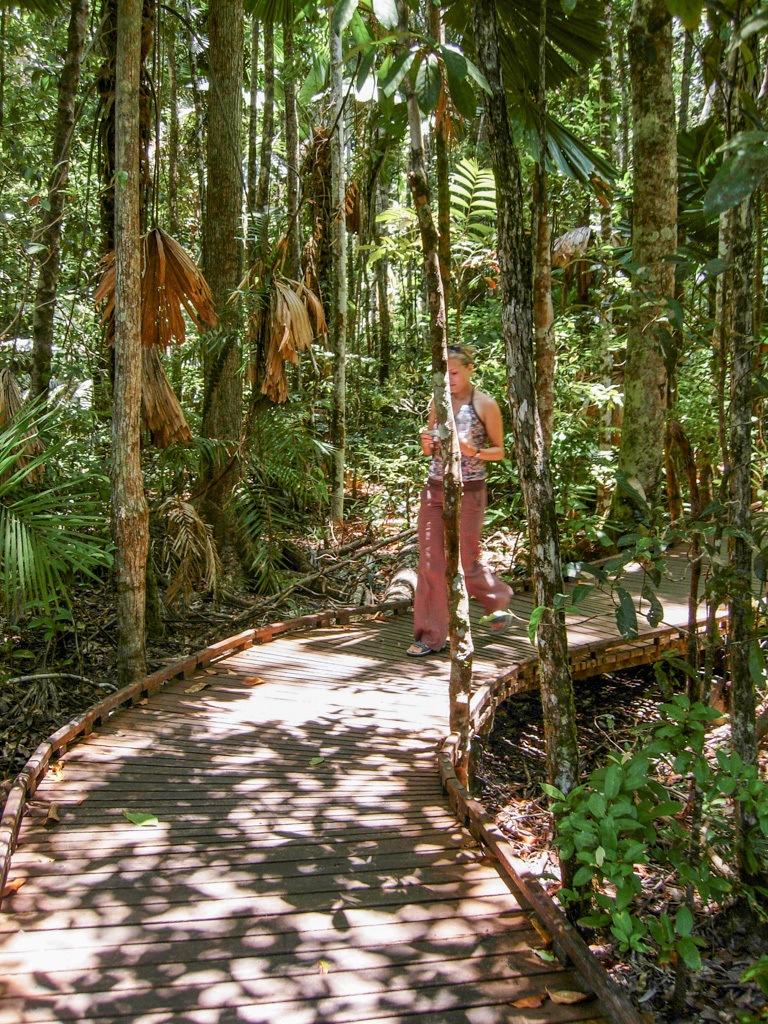 TROPISCHE VERRASSINGEN IN CAPE TRIBULATION AUSTRALIË || The Travel Tester