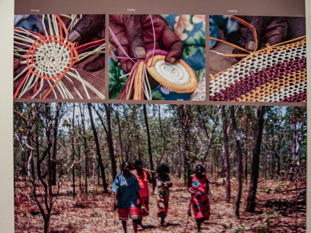 Darwin Australië: Op Naar De Nationale Parken Van De 'Top End'    The Travel Tester