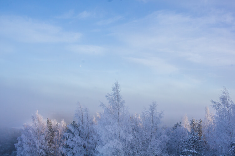 Travel to Seinäjoki Finland for Silence and Energizing Nature - Especially in Winter!    The Travel Tester