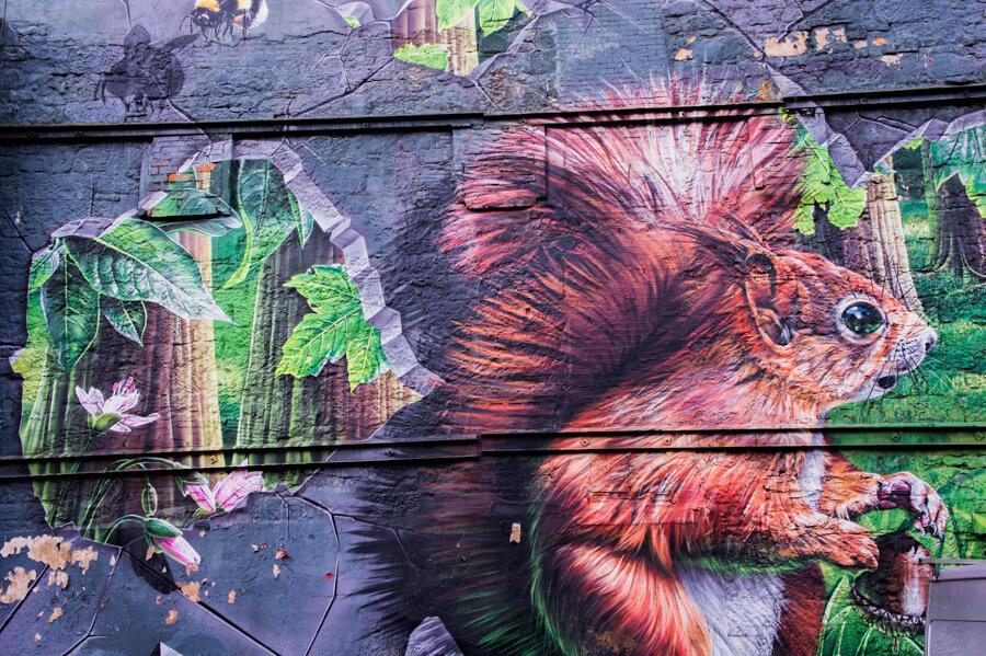 Glasgow Street Art Artists and their Best Murals | The Travel Tester