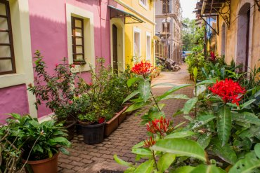 35 Doors and Windows in Panjim's Latin Quarter Fontainhas – Goa, India