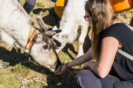 5x Things to Do in North Finland & Finnish Lapland in Summer & Spring || The Travel Tester