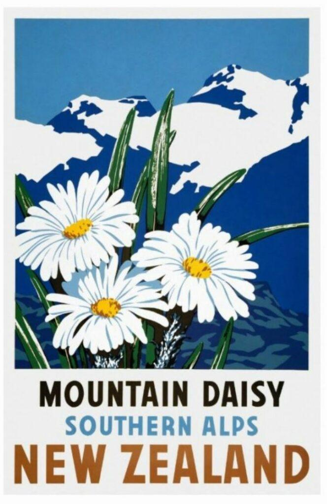 42x Vintage Travel Posters New Zealand That You Want To Put On Your Wall    The Travel Tester
