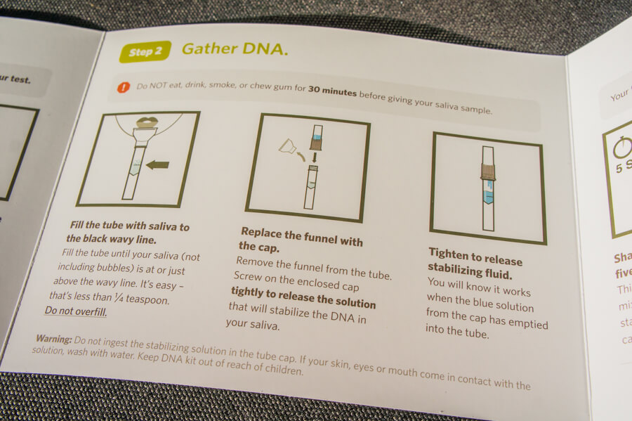 Open Your World And Take A Home DNA Test Like We Did with Momondo and Ancestry! || The Travel Tester