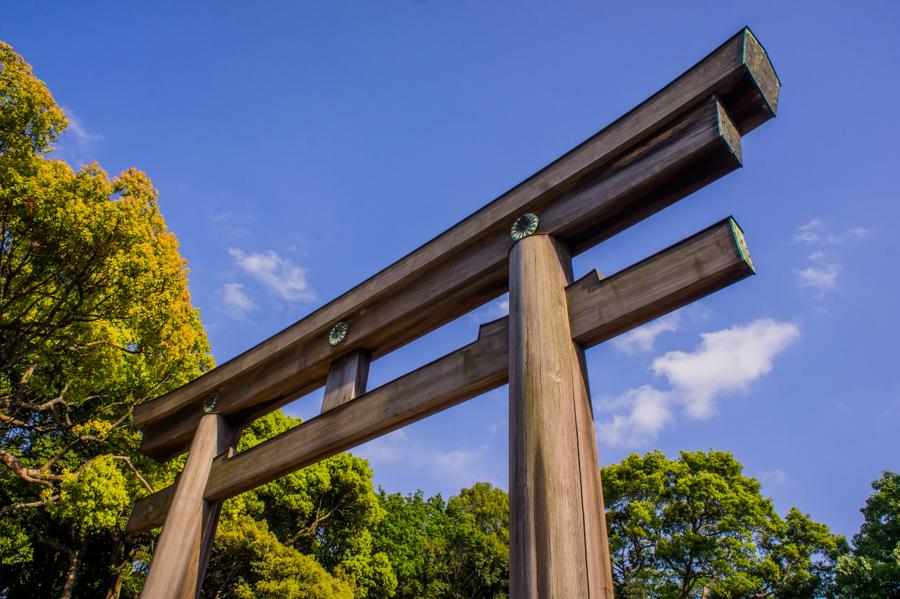 Discover the Meiji Tokyo Shrine in Shibuya, Japan