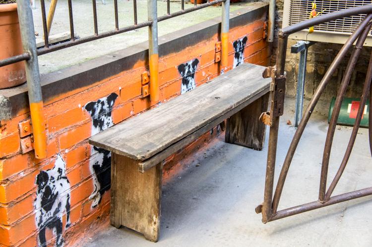 Streetart - Dogs behind Bench