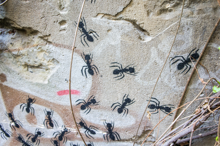 Street Art Berlin - Ants