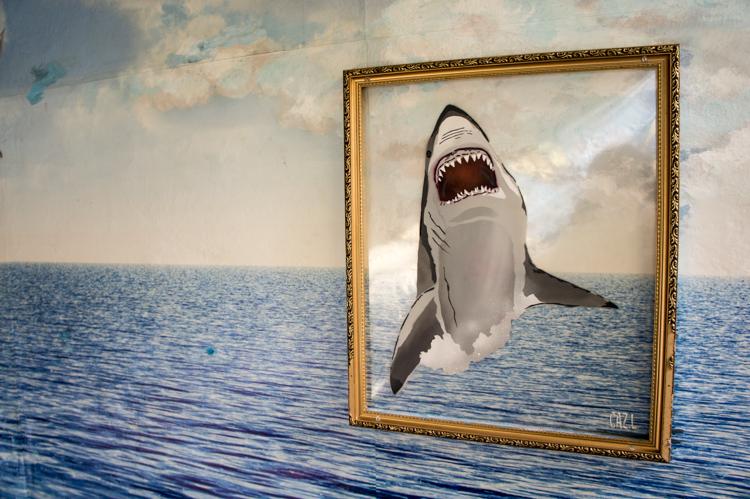 Street Art Berlin - Shark