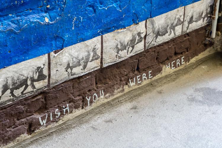 Street Art Berlin - Pigs Running