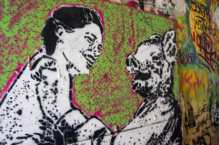 Streetart - Woman and Pig